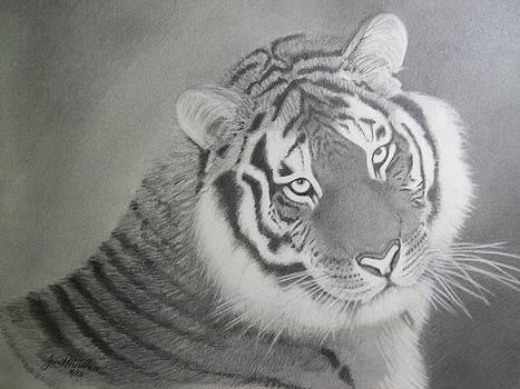 Siberian Tiger   by Janet Hinshaw