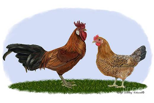 Sicilian Buttercup Rooster and Hen by Leigh Schilling