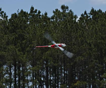 Sideways Flight by Kelly D Photography