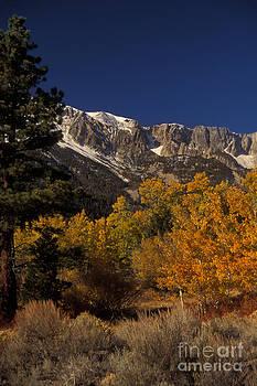 Ron Sanford - Sierra Nevadas In Autumn