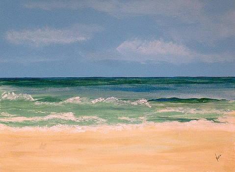 Siesta Beach by Nancy Nuce
