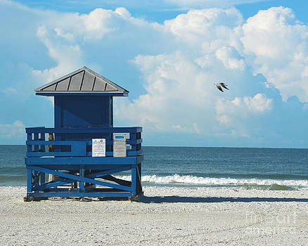 Siesta Key Beach 2 by Robert  Suggs