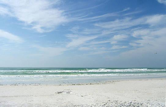 Siesta Key Beach by Rosie Brown