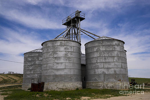 Silence of the Silos by Nina Prommer