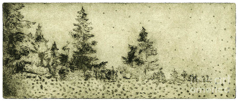 Silence - The North - Landscape - Trees  - Forest - Dots - Fall - Fine Art Print - Stock Image by Urft Valley Art