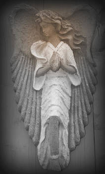 Kathy Peltomaa Lewis - Silent Angel