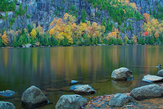 Silent Lake by Ranjana Pai