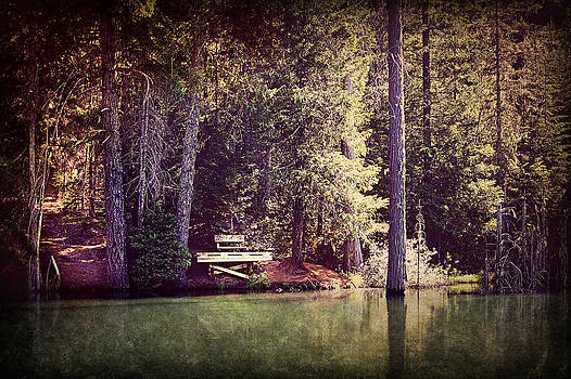 Silent Reflections by Melanie Lankford Photography