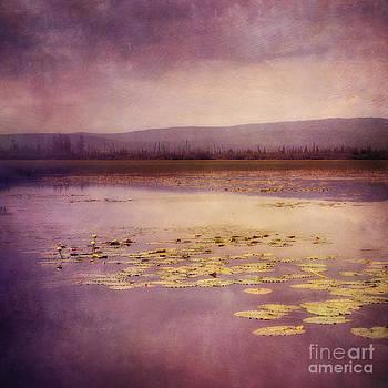 Silent water  by Priska Wettstein