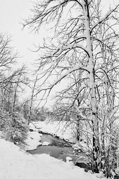 Silent Winter's Day by Karen Varnas