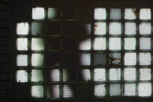 PJ Boylan - Shadow previously titled Silhouette