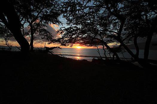 Silhouette Sunset by NaDean Ribitzki