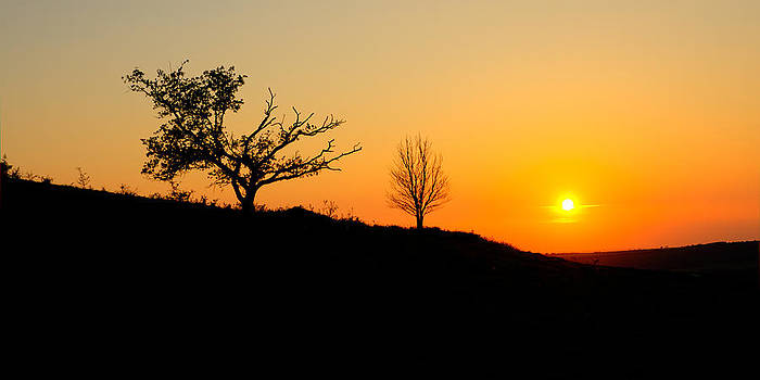 Silhouette Sunset by Trevor Wintle