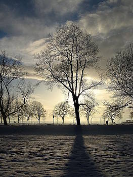 Silhouettes and a Long Winter Shadow  by Brian Chase
