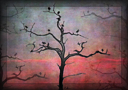 Silhouettes by Hanny Heim