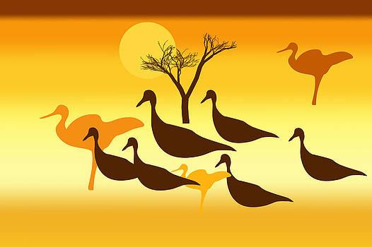 Silhouettes of wild birds at sunset by Larisa Karpova