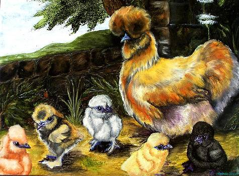 Silkie Hen and chicks by Amanda Hukill