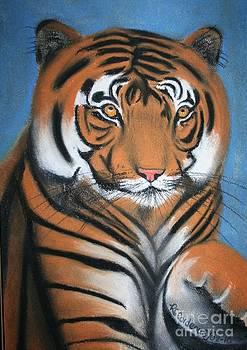 Silly Tiger by Rebecca Christine Cardenas