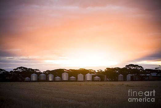Tim Hester - Silo Sunset