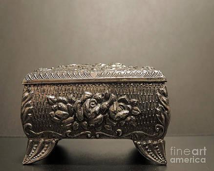 Silver Box 2 by ChelsyLotze International Studio