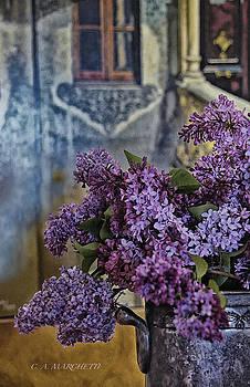 Silver Lilacs by Carolyn Marchetti