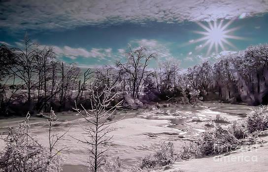 Brenda Giasson - Silver Winter Ice