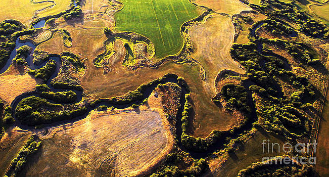 Silvies River Aerial Harney County Oregon by Michele AnneLouise Cohen