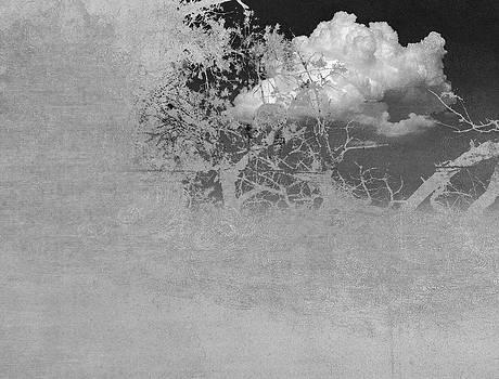 Similar to the cloud by Vladas Orzekauskas