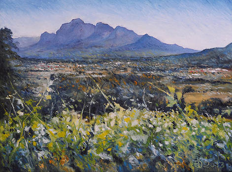 Simonsberg Cape Town South Africa by Enver Larney