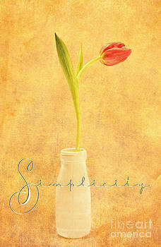 Simplicity by Lori Frostad