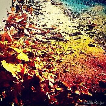 ...simplistic Elegance (12) #leaves by Tyrone Stokes