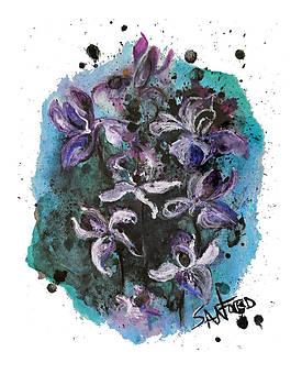 Amanda  Sanford - Simply Iris-sistable