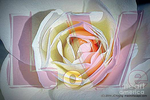 Love Simply by JCYoung MacroXscape