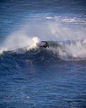 Simpsons Reef Surfer 2  by Kristal Talbot