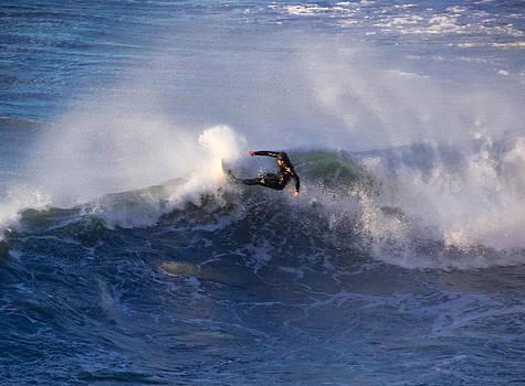 Simpsons Reef Surfer by Kristal Talbot