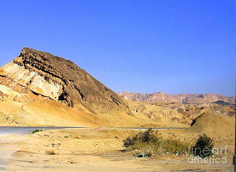 Sinai Desert  by Jason Sentuf