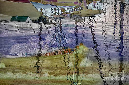 Sindbad's Magic by Jay Ressler