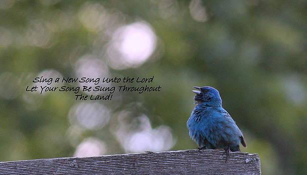 Rosanne Jordan - Sing a New Song