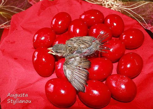 Augusta Stylianou - Singing Over Red Eggs