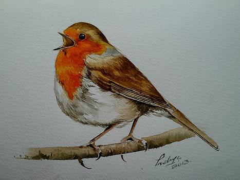 Singing Robin by Pradeepa Rupathilake