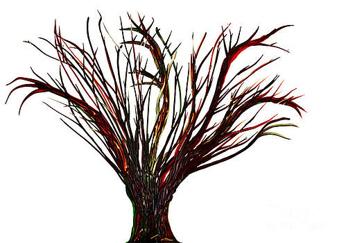 Simon Bratt Photography LRPS - Single bare tree isolated