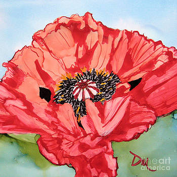 Single Oriential Poppy by Diane Marcotte