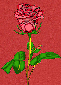 Single Red Rose With Red Background by Christine Perry
