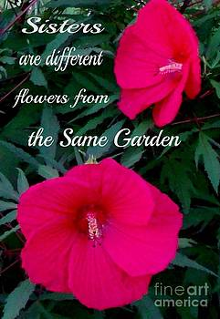 Gail Matthews - Sisters are differnt flowers from the same garden