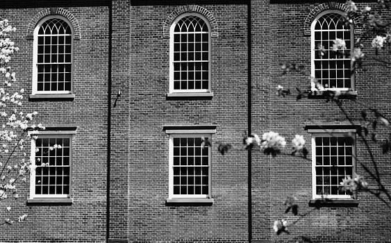 Robin Mahboeb - six windows