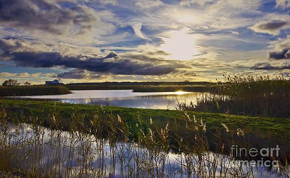 Darren Burroughs - Sizewell On The Suffolk Coast