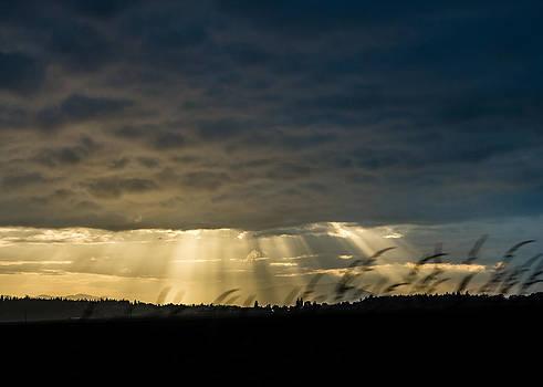 Ronda Broatch - Skagit Valley Sunset 2