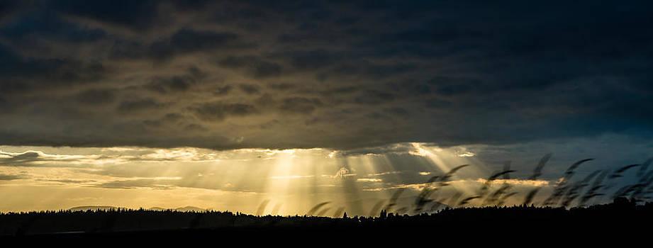 Ronda Broatch - Skagit Valley Sunset 3