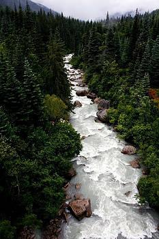Skagway River Alaska by Al Blount