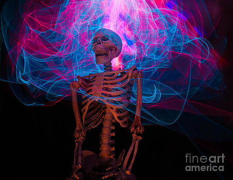 Skeleton light painting 2 by Shawn  Bowen
